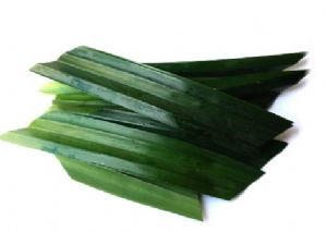 Fresh Pandan Leaves [Rampe, ScrewPine] | Buy Online at the Asian Cookshop